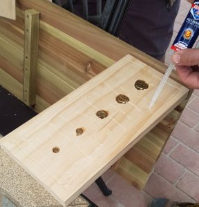 DIY Nut & Screw Board
